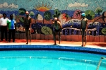 Inauguration of Renovated Swimming Pool